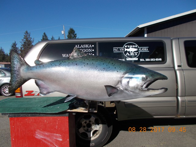 steelhead replica
